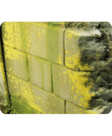 Vallejo Weathering Effects : Moisissure et Lichen |Boutique Starplayer | Peinture & Modélisme