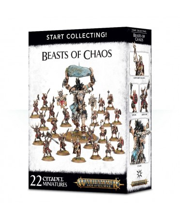 Start Collecting ! : Beasts Of Chaos